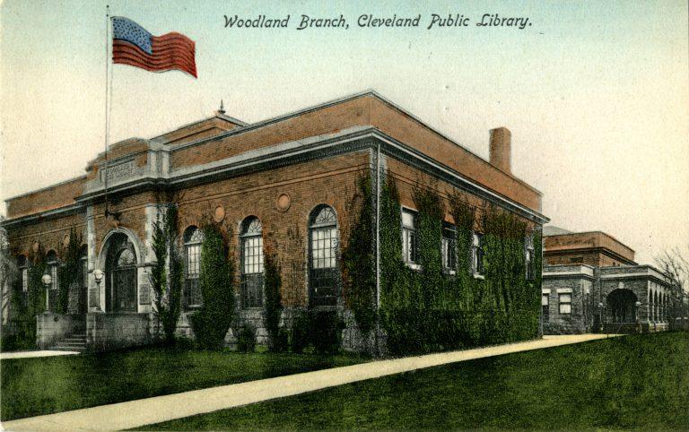 Woodland branch